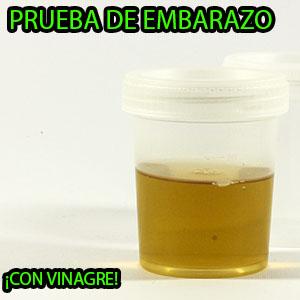 prueba de embarazo con vinagre